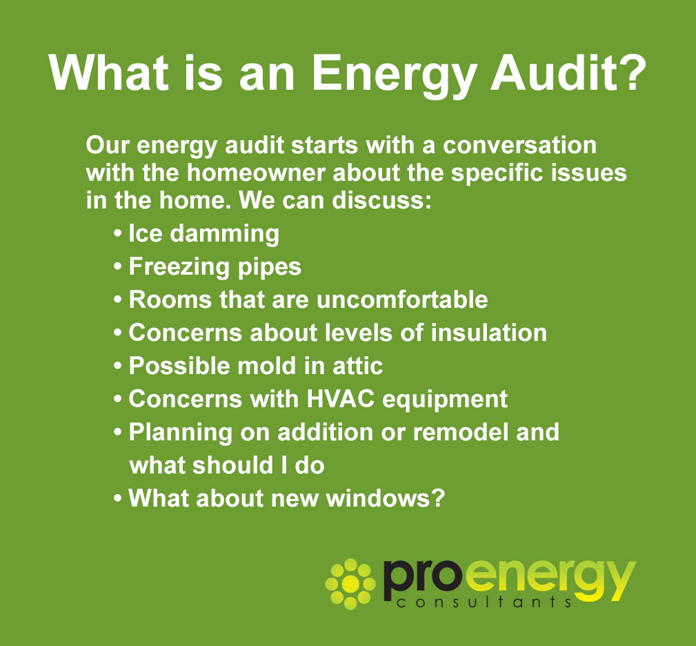 Pro Energy Consultants Energy Audit